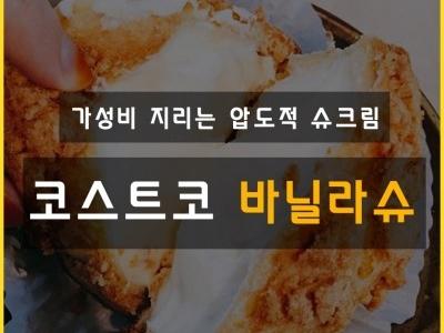 코스트코 대박추천_바닐라슈
