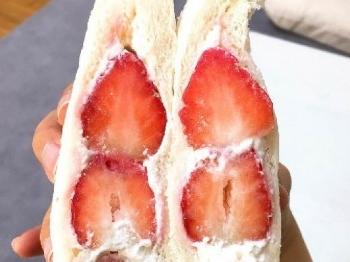 딸기크림샌드위치 종류별 비교:D