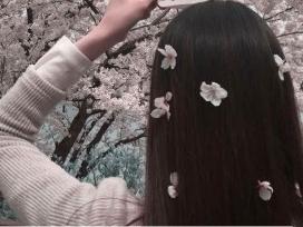 석촌호수 벚꽃축제가 내일부터! 벚꽃축제보고 뭐 먹지 고민된다면?