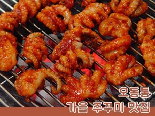 오동통 가을 주꾸미 맛집 5
