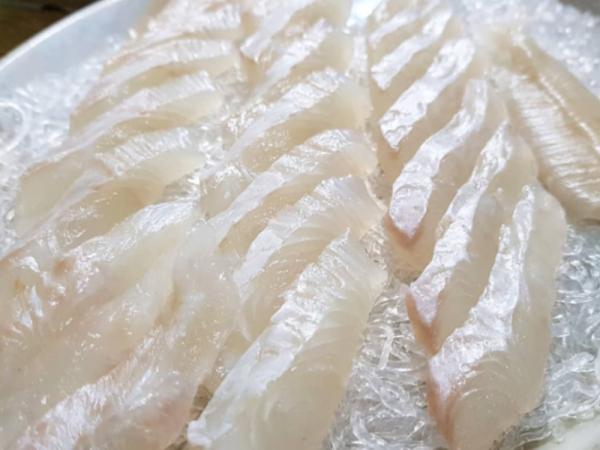 [경기 남양주] 쫄깃한 식감이 고소한 광어회
