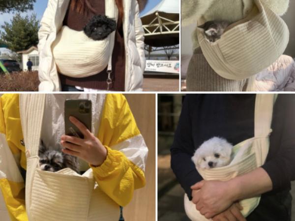 [애키새] 강아지 슬링백 이동가방