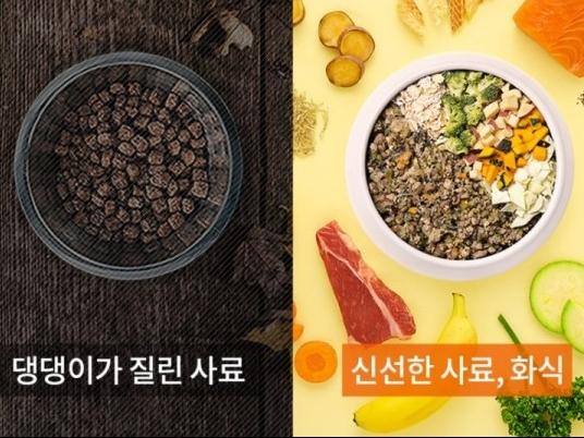 [어니스트밀] 강아지화식 3종